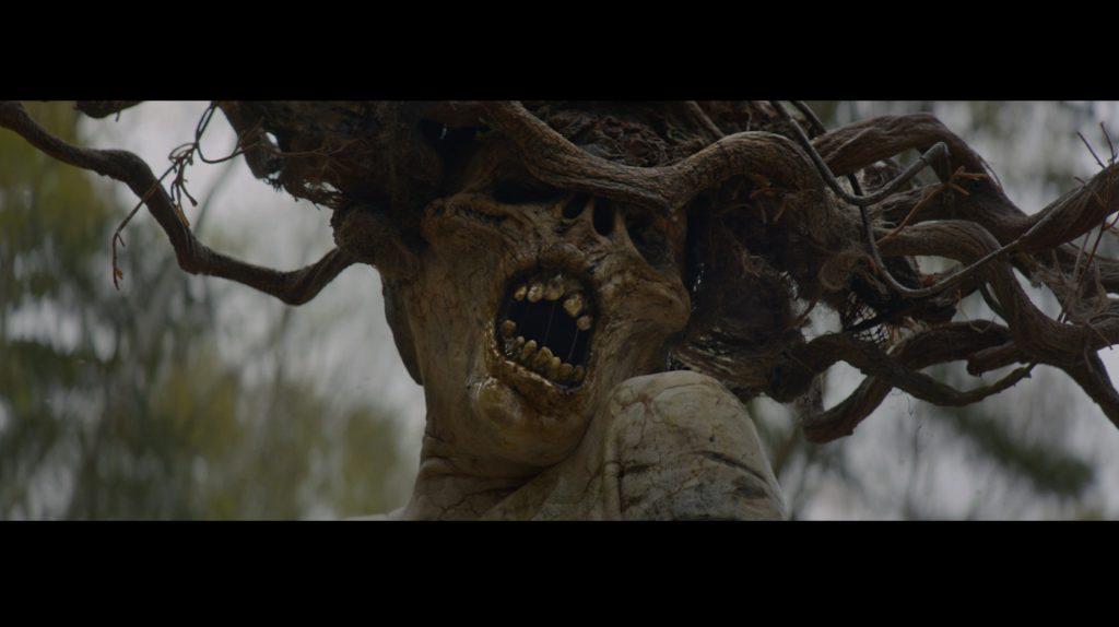 the_birch
